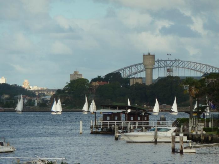 sydney harbour 003